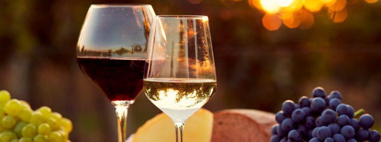 Especial Queijos e Vinhos: 10 motivos para tomar vinho e garantir benefícios à saúde